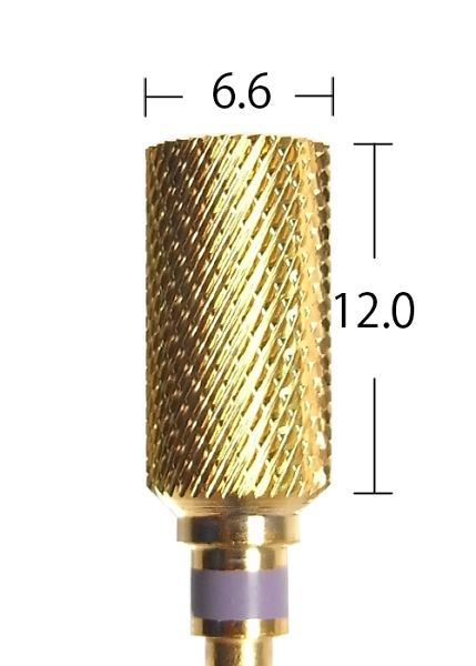 C1701G